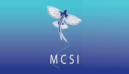 Marine CSI