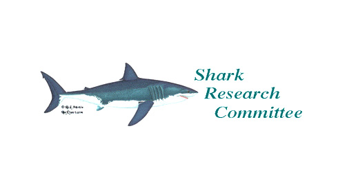 Shark Research Committee