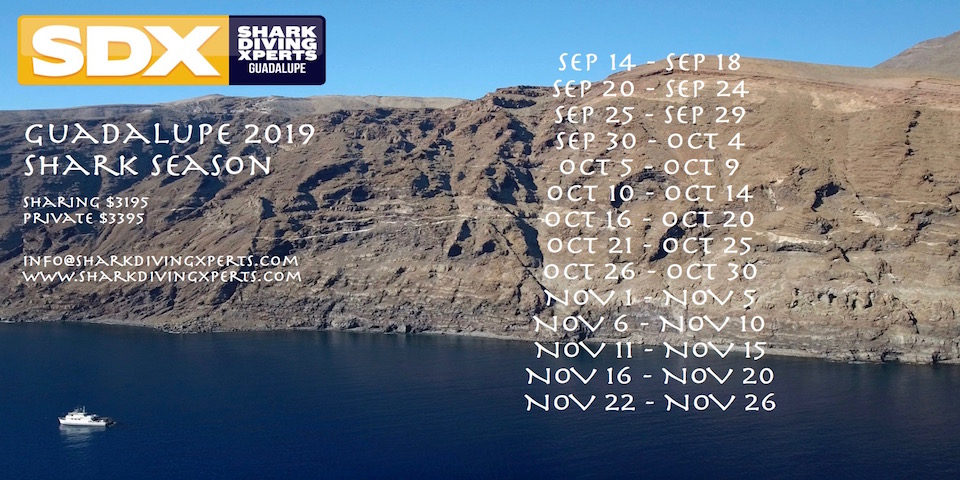 2019 season dates released!!!