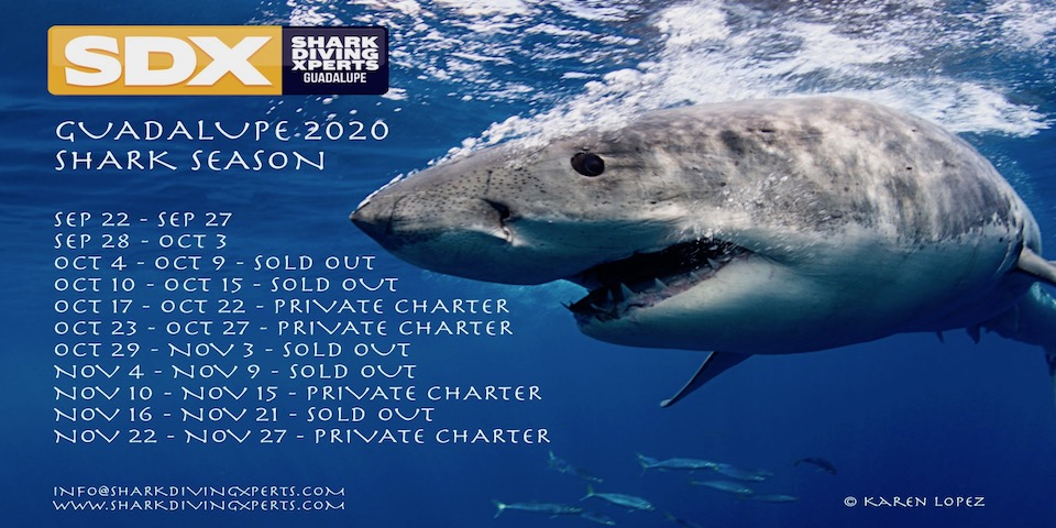2020 Guadalupe dates released!!!